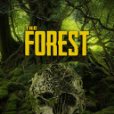 The Forest IR
